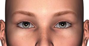 理想的な眉-1