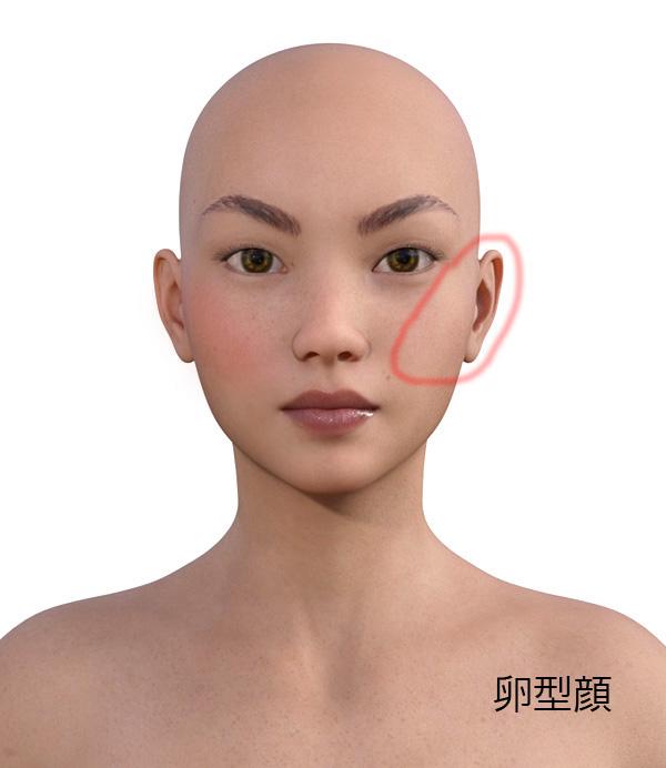 顔型別のメイクの仕方509