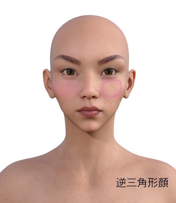 顔型別のメイクの仕方511