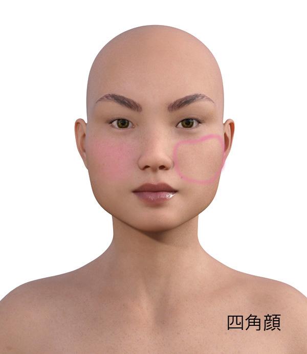 顔型別のメイクの仕方512