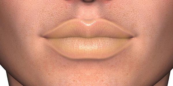 lip13